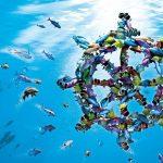 Denizbank Kredi Kartı Seçenekleri