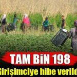 Bin 198 Kadın Girişimciye Hibe Verildi