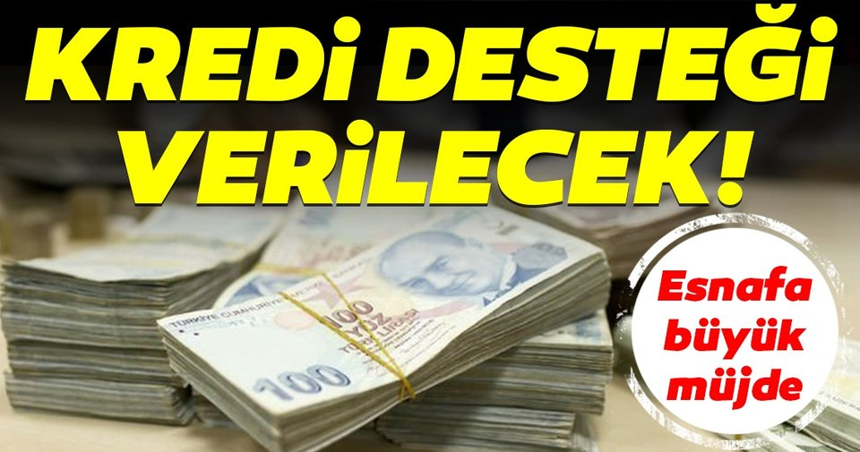 Esnaf Destek Kredileri - 2020