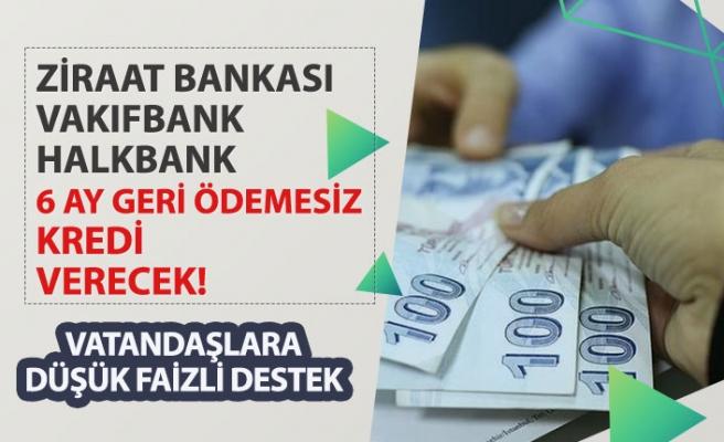 Halkbank 6 Ay Ödemesiz Kredi Detayları