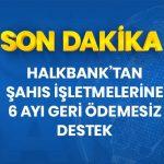 Şahıs İşletmelerine 6 Ay Ödemesiz Kredi Halkbank'ta
