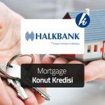 Halkbank Kktc Konut Kredisi
