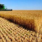Kimler Garanti Bankası Tarım Sektörü Destek Paketinden Yararlanabilir?
